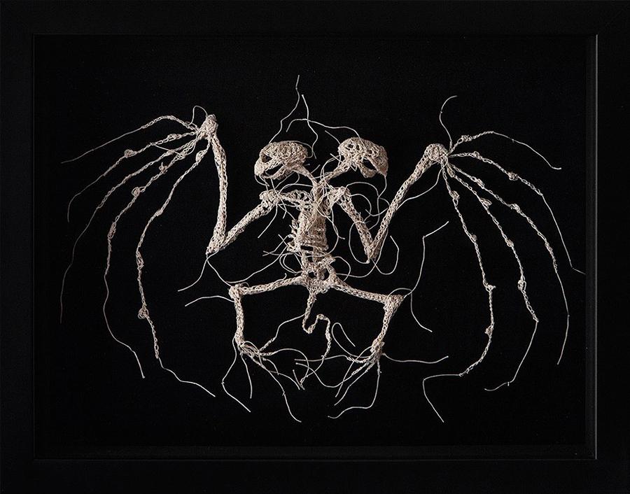 Crochet Animal Skeletons Caitlin T. Mccormack