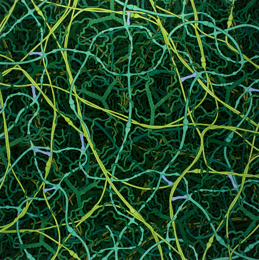 biosites-basementmembrane