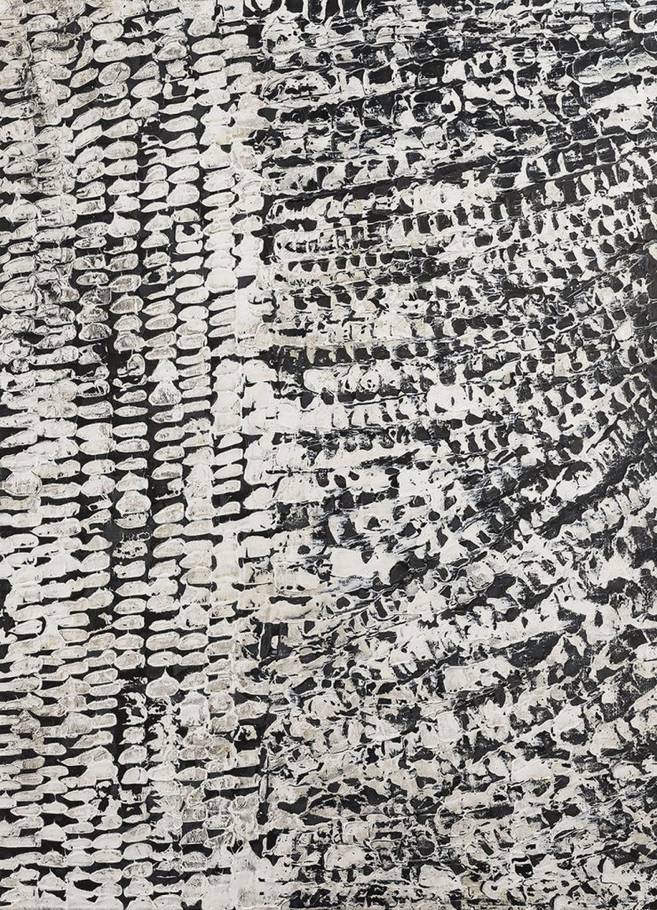 An artistic rendering of skin, black and white and patterned