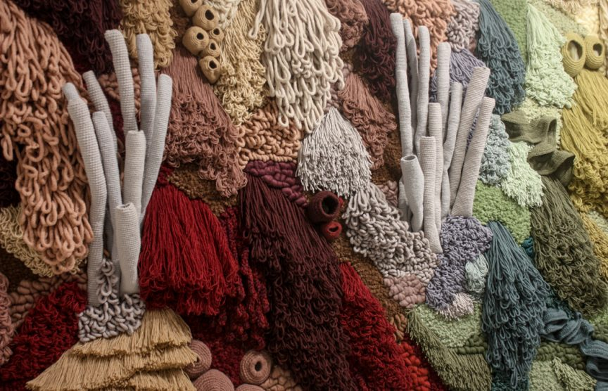crocheted coral reef sciart