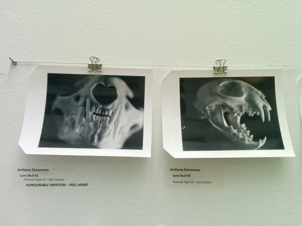 two black and white photos from the An Instant Instant show at Science World
