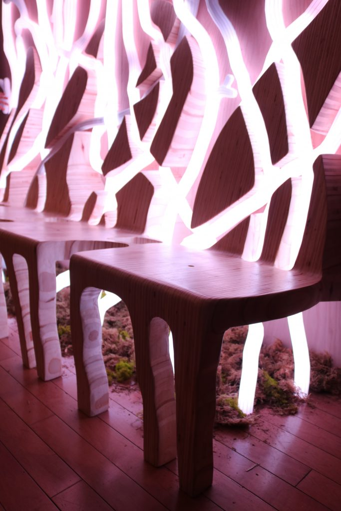 Close up of a bench connected to lights, with some plants underneath