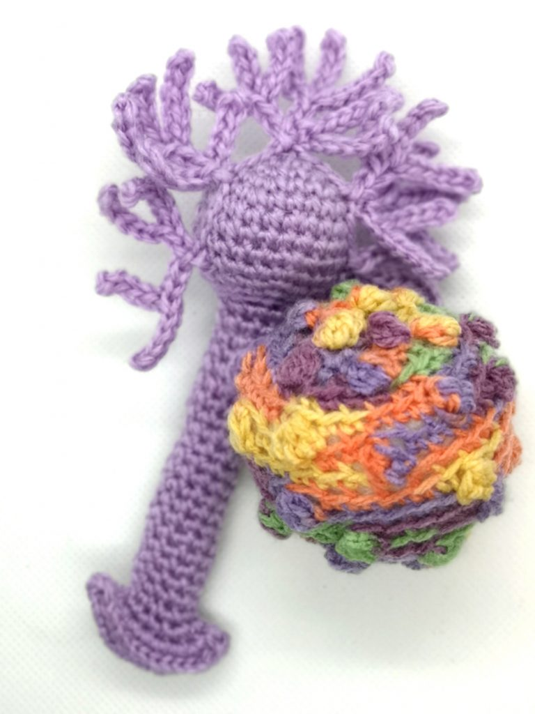 Crocheted Stem Cell and Neuron SciArt by Tahani Baakdhah
