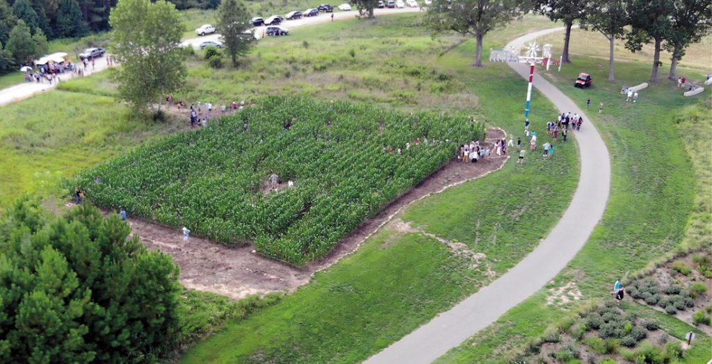 A massive corn maze in a green field, full of visitors