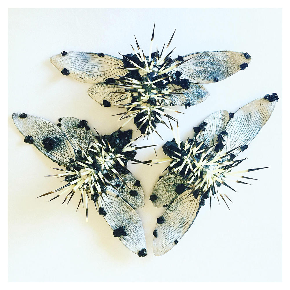 black and white insects, artwork