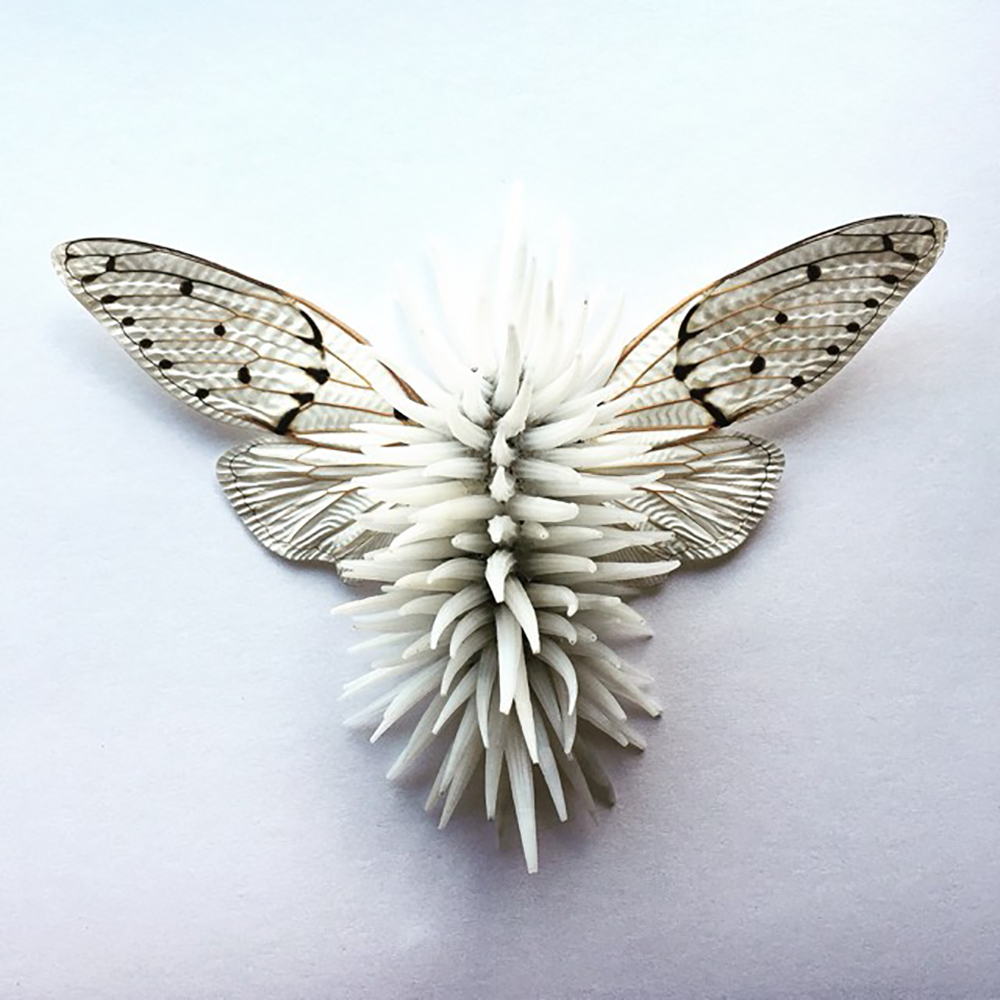 a white insect, artwork