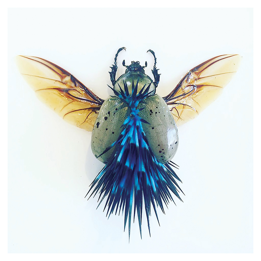spiky green bug, sciart