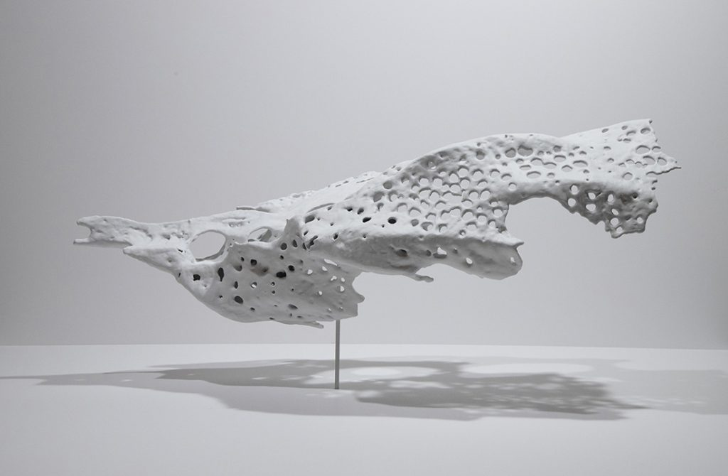 Elongated bone structure with holes in it, white and suspended in air