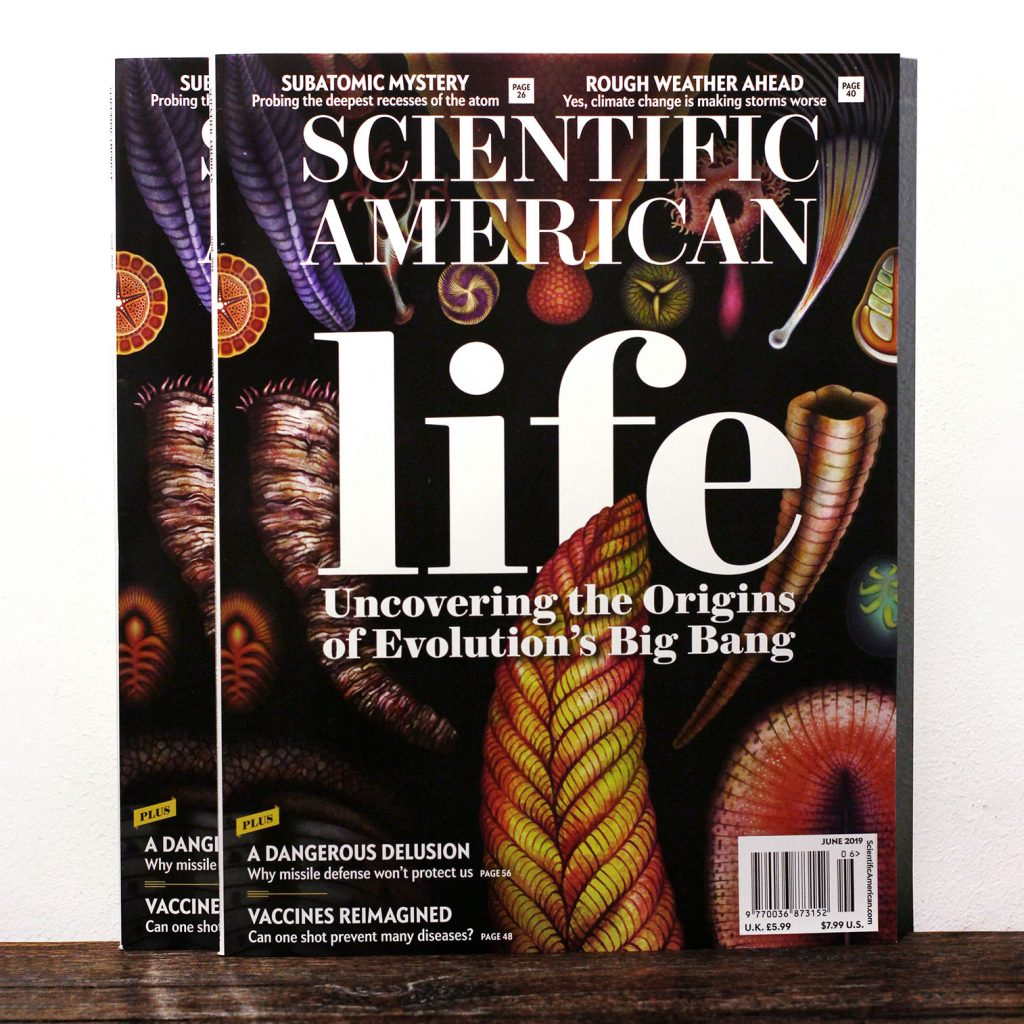 Scientific American magazine cover featuring the earliest multicellular lifeforms in the Ediacaran biota