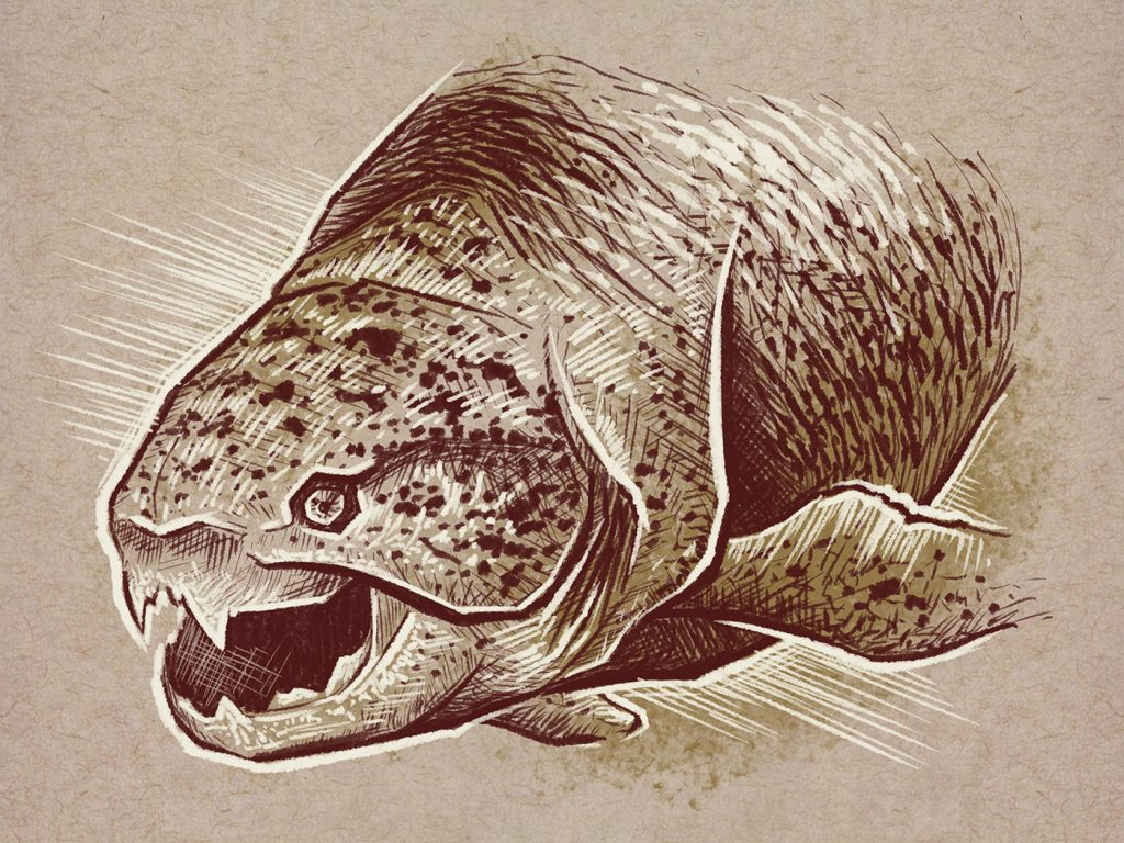 Dunkleosteus, an armored fish that lived in the Devonian Period over 360 million years ago