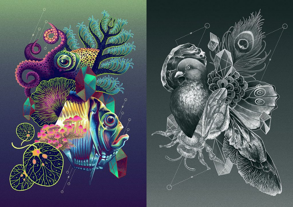 On the left panel, there are marine organisms merged together in various shades of cool colors. On the right, there are birds, insects, and geometric shapes in shades of black and white.