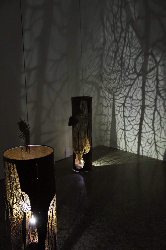 branched structures casting a shadow on the wall in a dark room