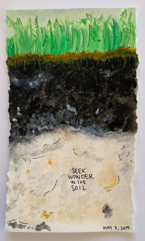 """Soil profile with green grass on top, dark brown/black soil beneath that, and light tan soil at the bottom. On the light tan soil, it says """"seek wonder in the soil."""""""