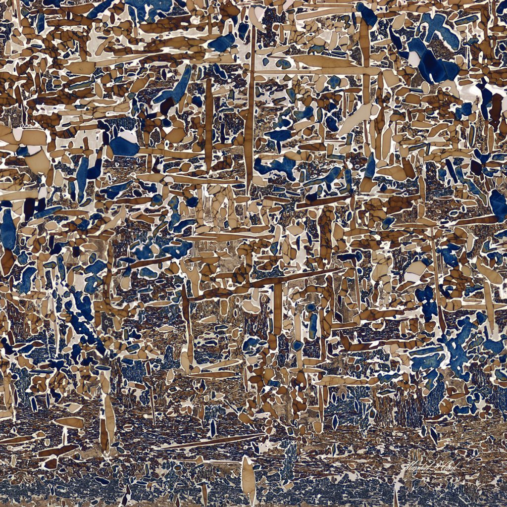 Dark blue and different shades of brown form thin, irregular shapes across the images.