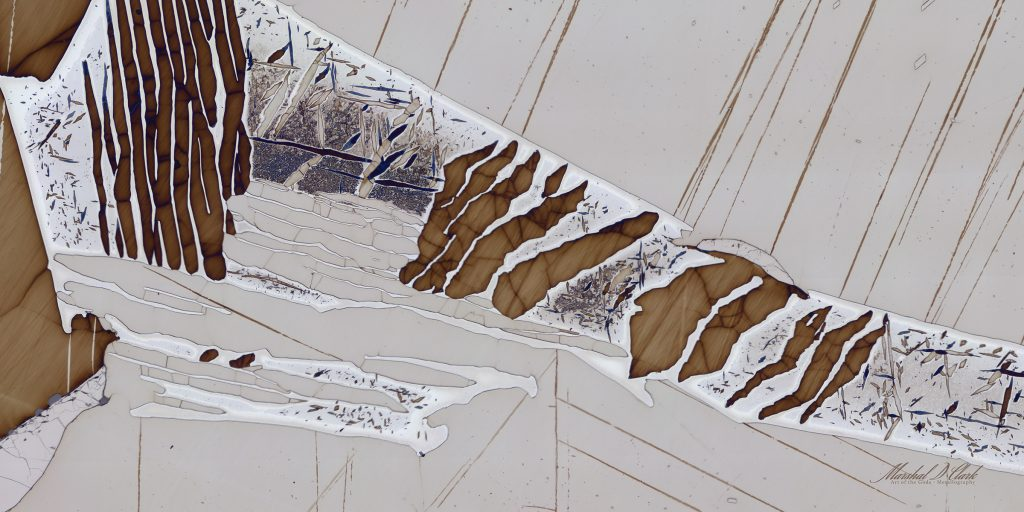 Dark brown lines with very thin blue lines in irregular directions in one diagonal stripe across the image. Background is off white with thin, dark brown lines throughout.