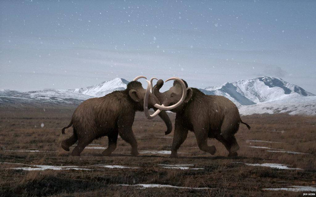 Two mammoths fighting in a grassy field in front of snowy mountains