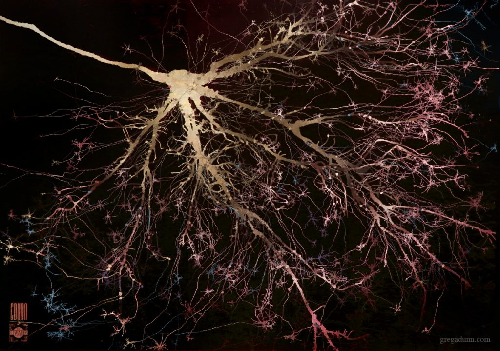 A neuron that looks like a branching tree on its side. The neuron itself is golden, branching out to purple, pink, and blue tips.
