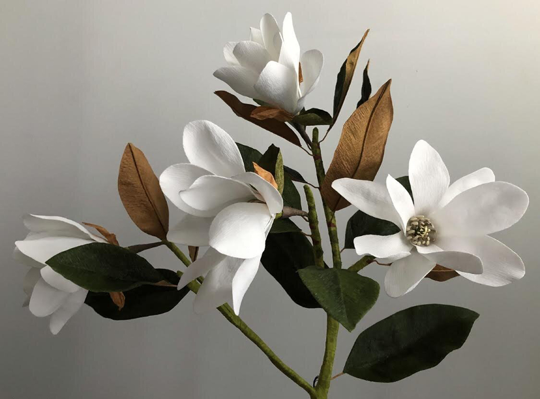 Magnolia branch with flowers