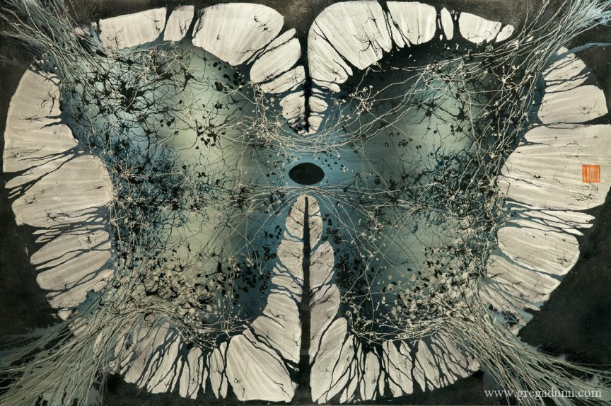 """Slice of the spinal cord that looks somewhat like butterfly wings. The """"wings"""" have a thick white outline and various shades of blue with lighter and darker dots in the center."""