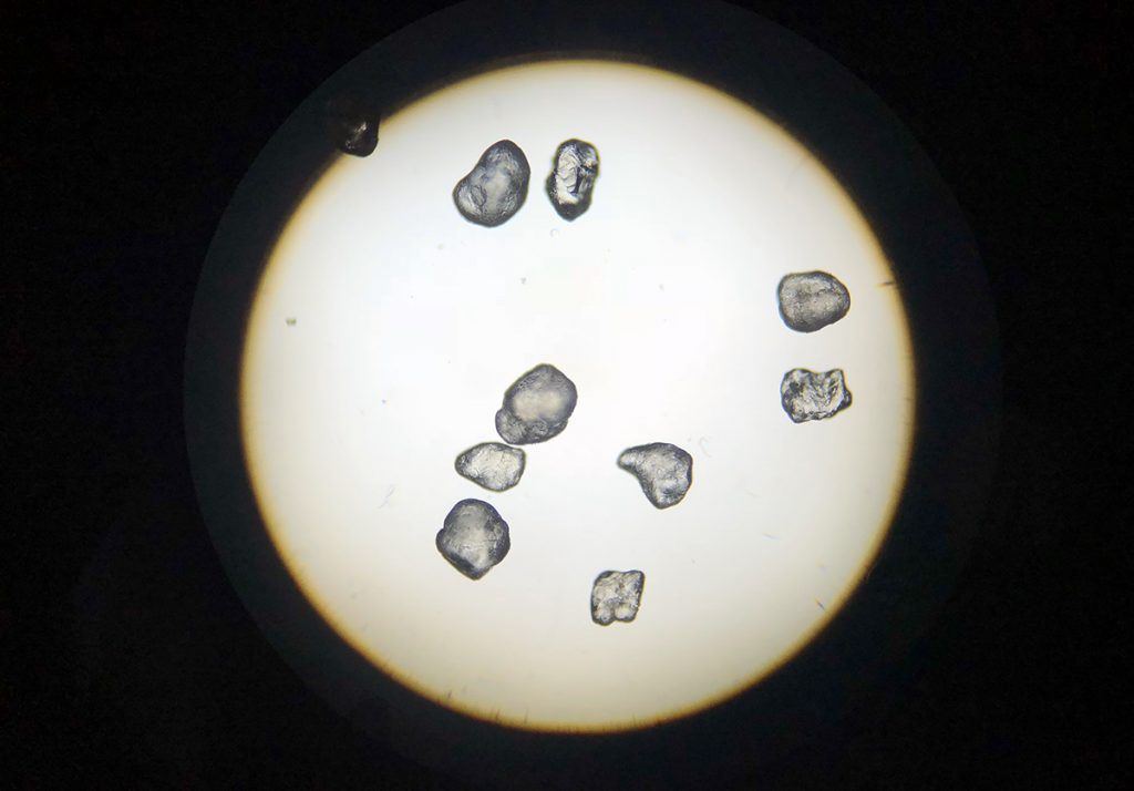 Microscope view of sand grains