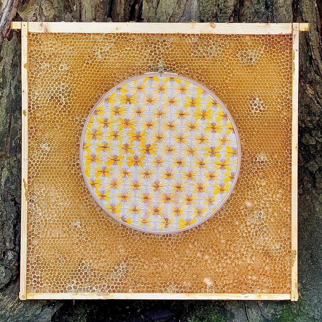 Yellow starburst pattern embroidered onto circular embroidery hoop. Hoop is embedded in honeycomb.