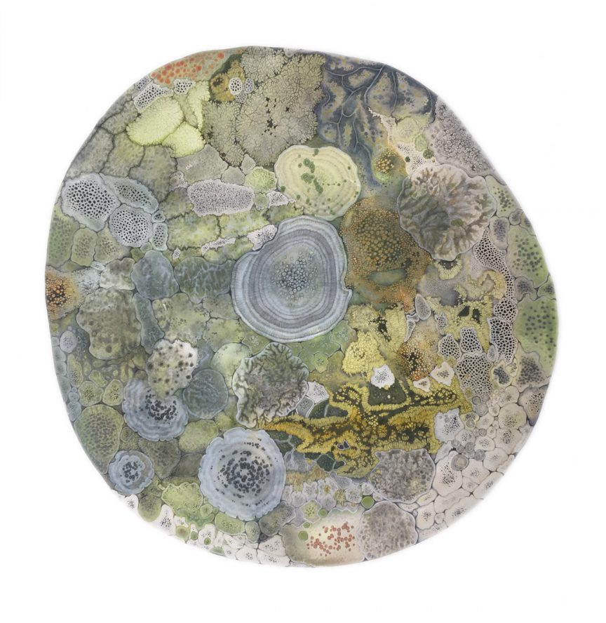 Drawing of a rounded rock covered with varying green/yellow lichens