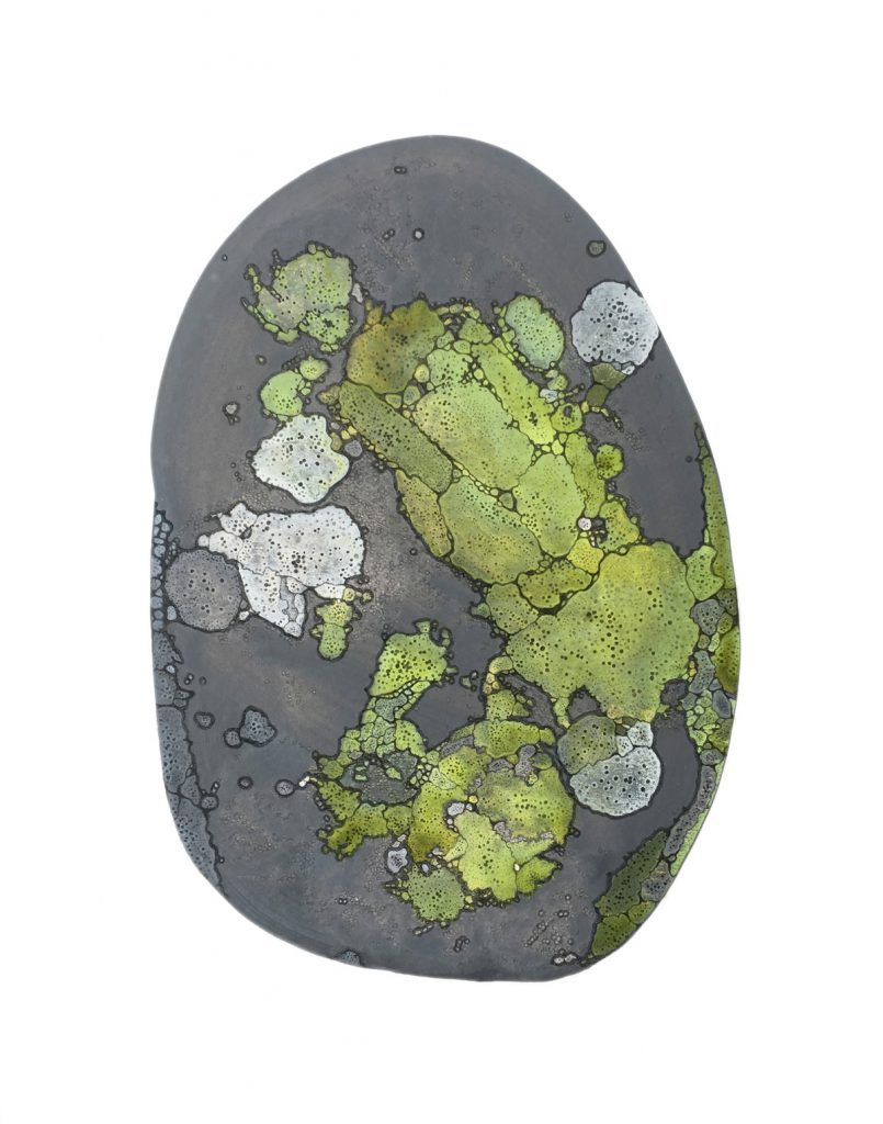 Rounded rock with patches of green and white lichen