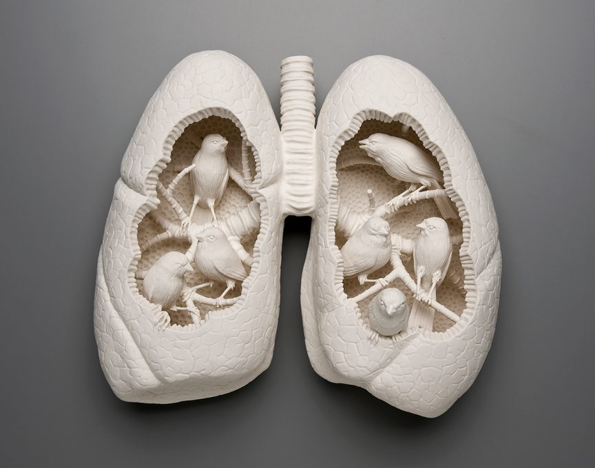 Canaries sitting in branches inside a pair of lungs