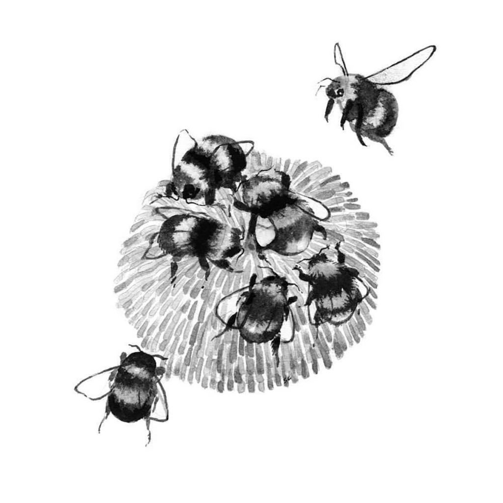 Bees (2017) by Sarah Crawley. A group of bees shown around a flower.