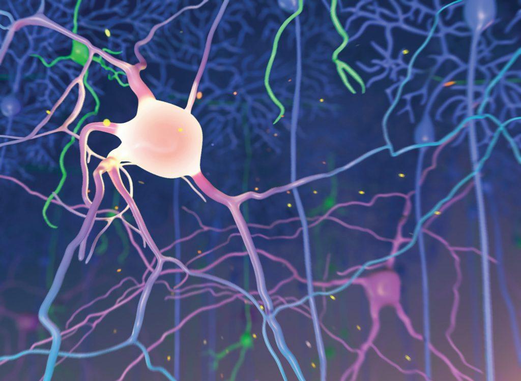 Animation 3D neuron by Avesta Rastan. Animated neuron in three dimensional presentation.