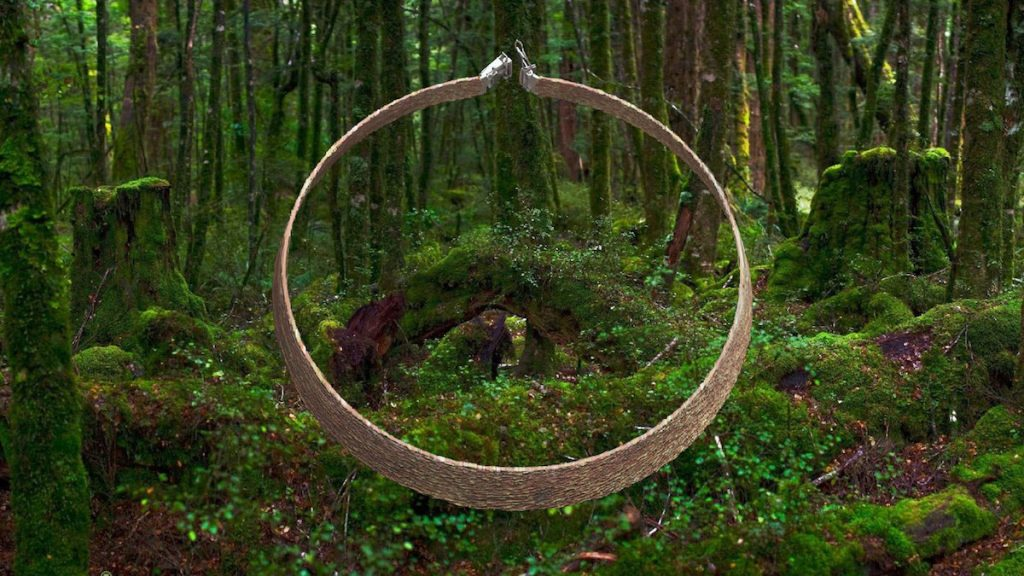 A belt-like object floating in front of a verdant forest scene.