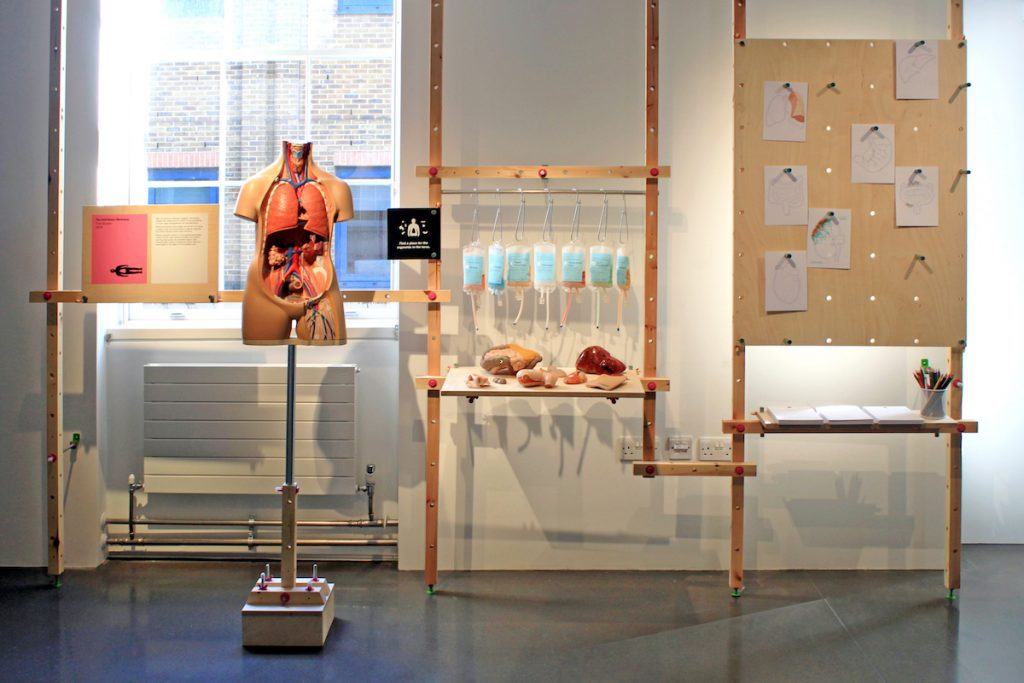 A gallery display of The Self-Donor Workshop with a model of a human torso with the organs showing, artificial organs and colorful IV bags on a table, and drawings of organs on display.