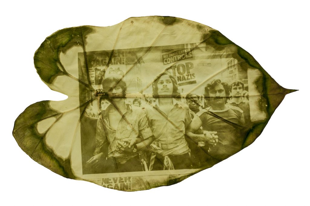 A green and yellow image of men marching together printed on a large leaf.