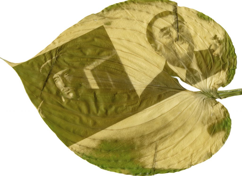 A green and yellow image of two men printed on a large leaf.
