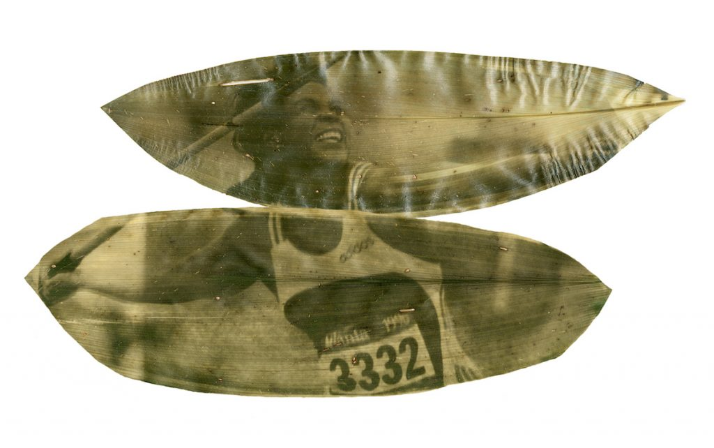 A green and yellow image of a javelin thrower printed on two long leaves.