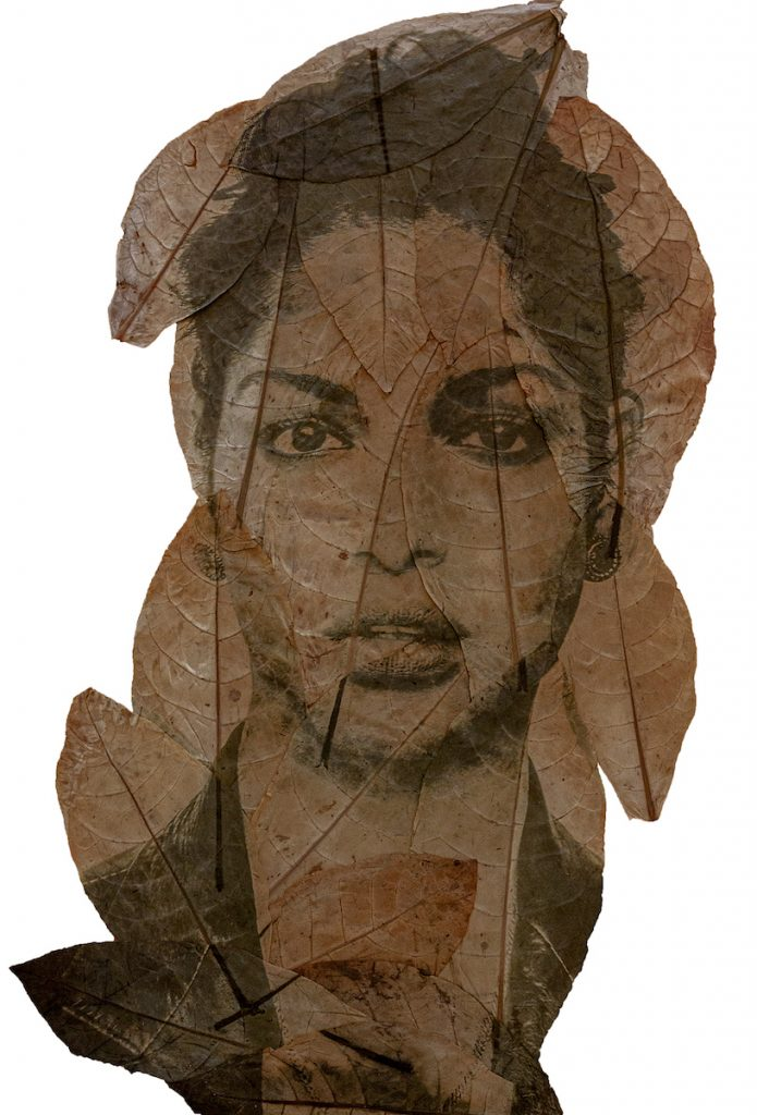 A brown and dark green image of a woman printed on several leaves.