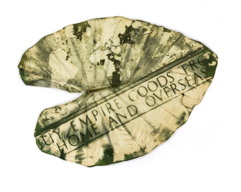 """A green and yellow image of a sign saying """"EMPIRE GOODS FROM HOME AND OVERSEAS"""" printed on a large leaf."""