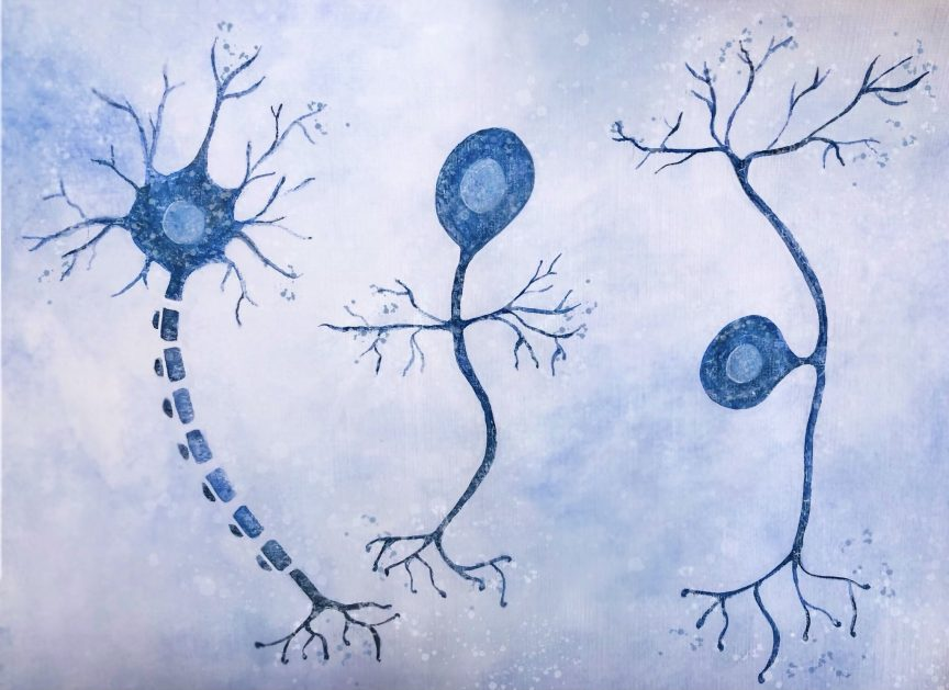 Neurons made with watercolors