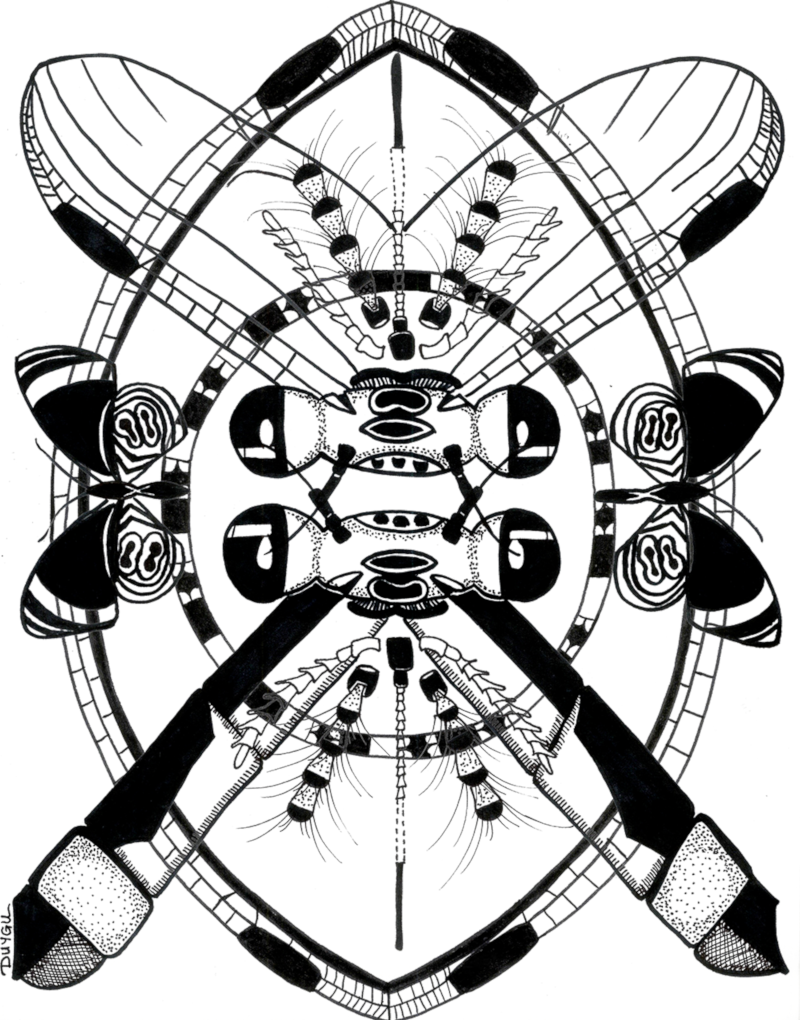 Black and white illustration of a vertically oriented ellipse shape with butterflies and other insects.