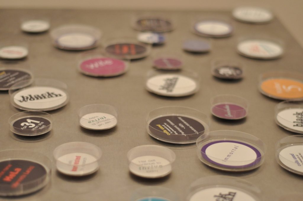 Close-up image of Petri dishes with different words and colors on the bottoms.