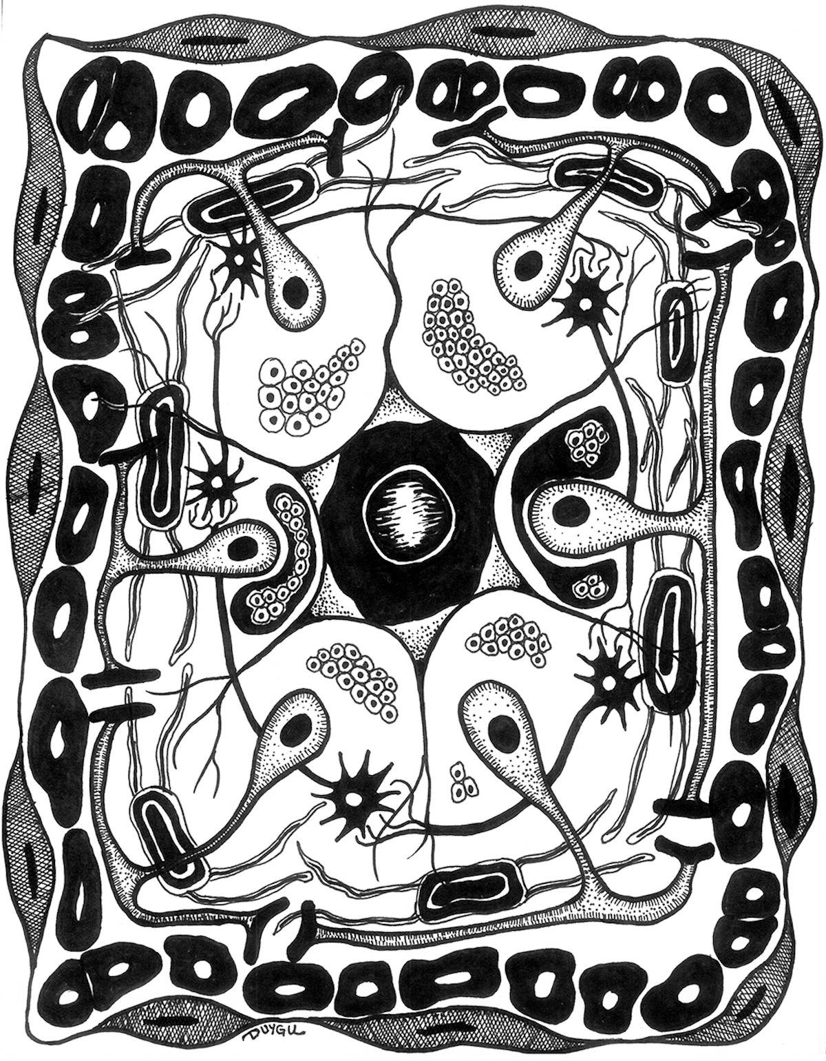 Black and white illustration of rectangle containing organic, cell-like shapes
