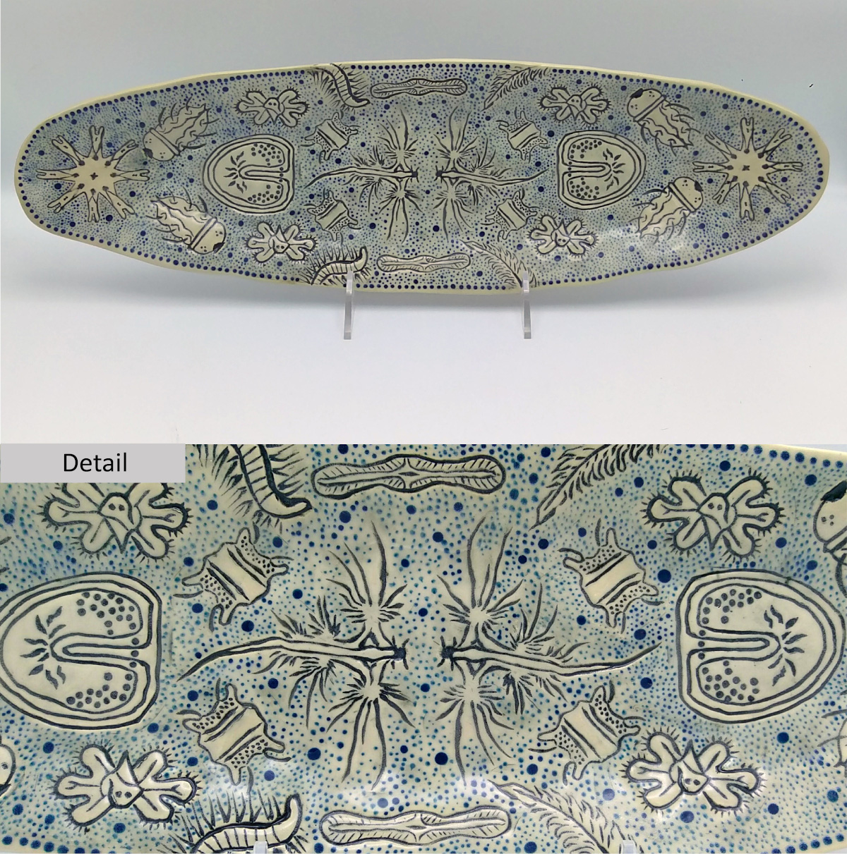 Long oval plate with detailing of various plankton surrounded by tiny blue spots. A closeup of the pattern is shown underneath.