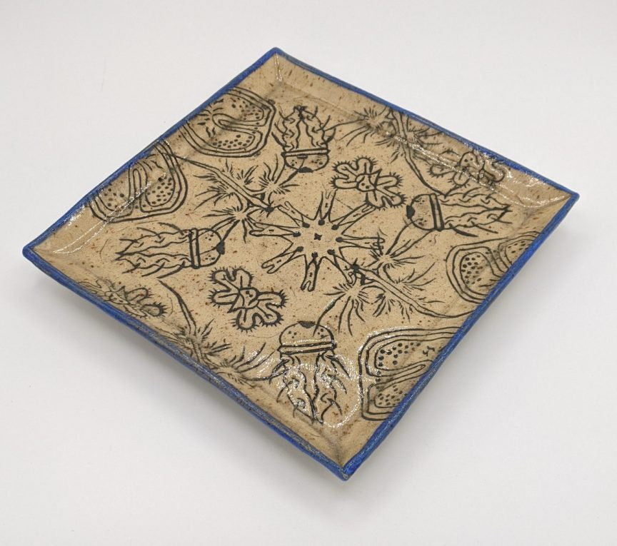 Square light brown plate with blue edges patterned with various plankton drawn in dark blue