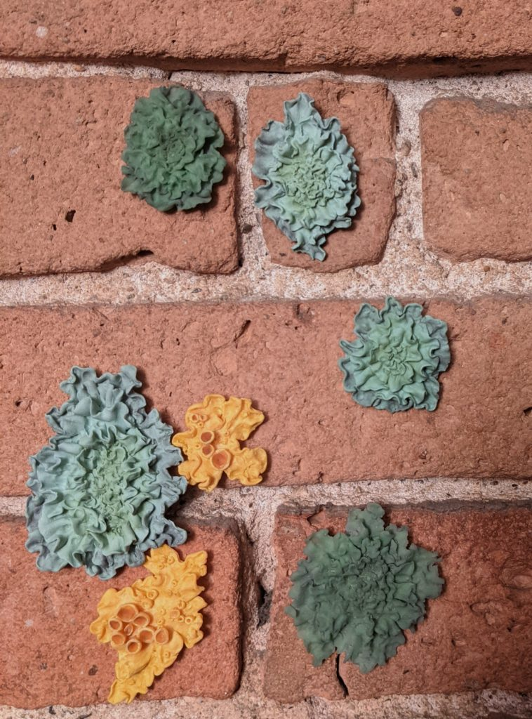 Green and yellow lichen on a brick wall