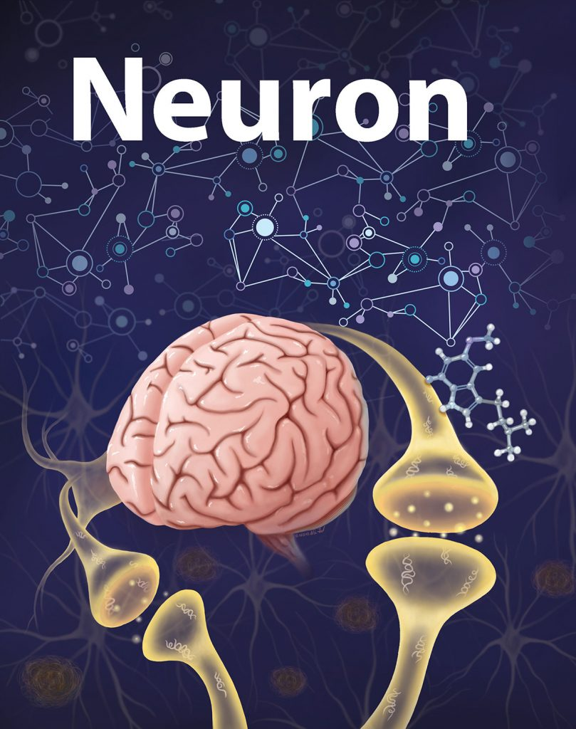 """Illustration of a brain with large axon branches coming out of it. In the background are geometric lines and shapes, indicating neural networks. The top of the cover mockup says """"Neuron."""""""