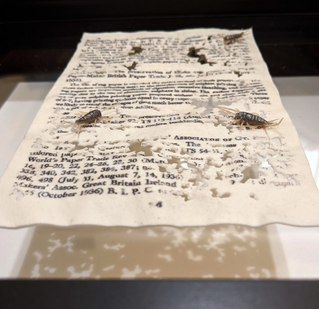 Book page covered with small holes and silverfish