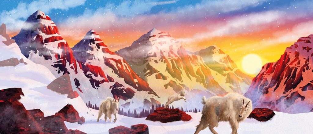 Rocky mountain goats illustration (2020) made by Tiffany Fung. A digital illustration of mountain goats in the snowy mountains .