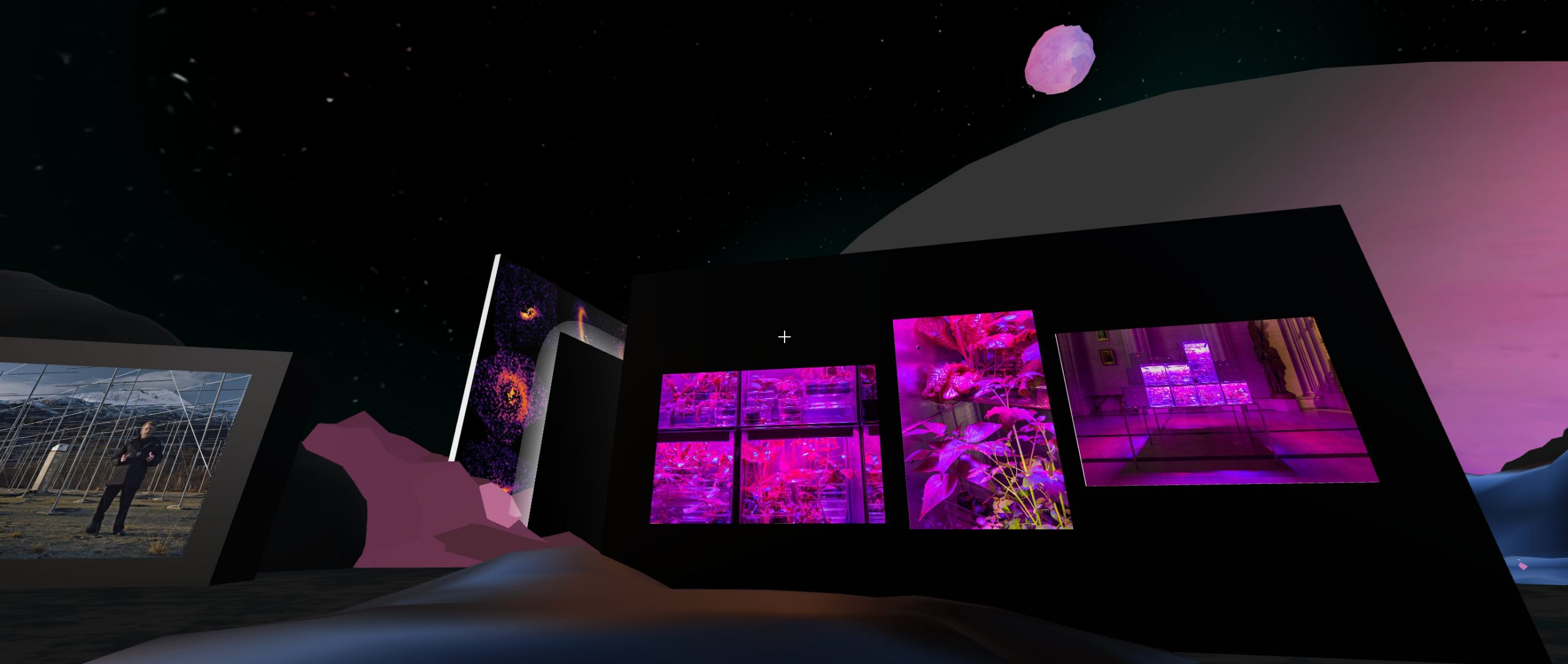 A black wall displaying a series of images, which shows stacked rows of glowing pink cubes and close-ups of pink and purple leaves.