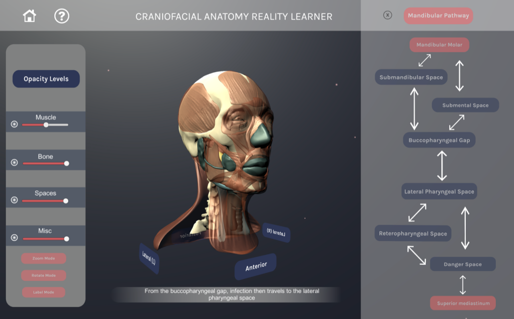 Virtual reality program screen capture showing a head with its muscles exposed, different settings to show what anatomical features are seen, and the different anatomical pathways are listed.