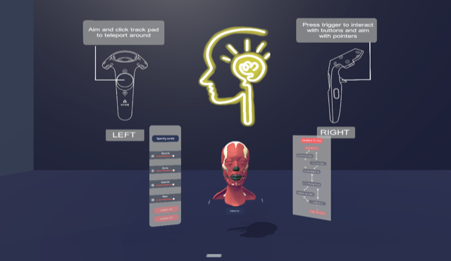 Virtual reality program screen capture showing a head with its muscles exposed and instructions for what moving left and right controls will do in the program.